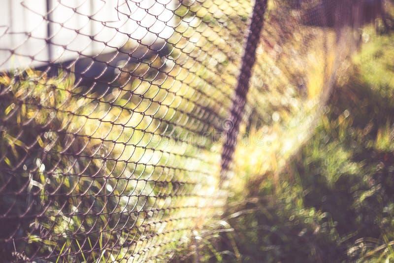 Koppla ihop staketet på en bakgrund av grönt gräs, fäkta, texturera, bakgrund, byggnadsmaterial arkivfoton