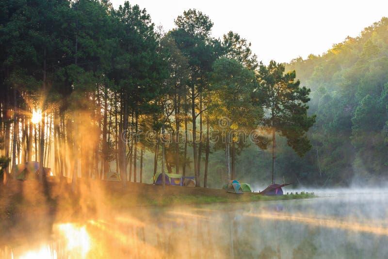 Kopuła namioty w mgle przy wschodem słońca fotografia royalty free
