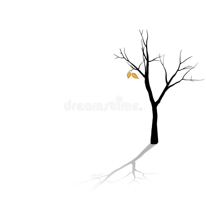 kopyto szewskie liść zdjęcie stock