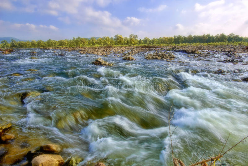 Kor- flod, Indore, Madhya Pradesh arkivbild