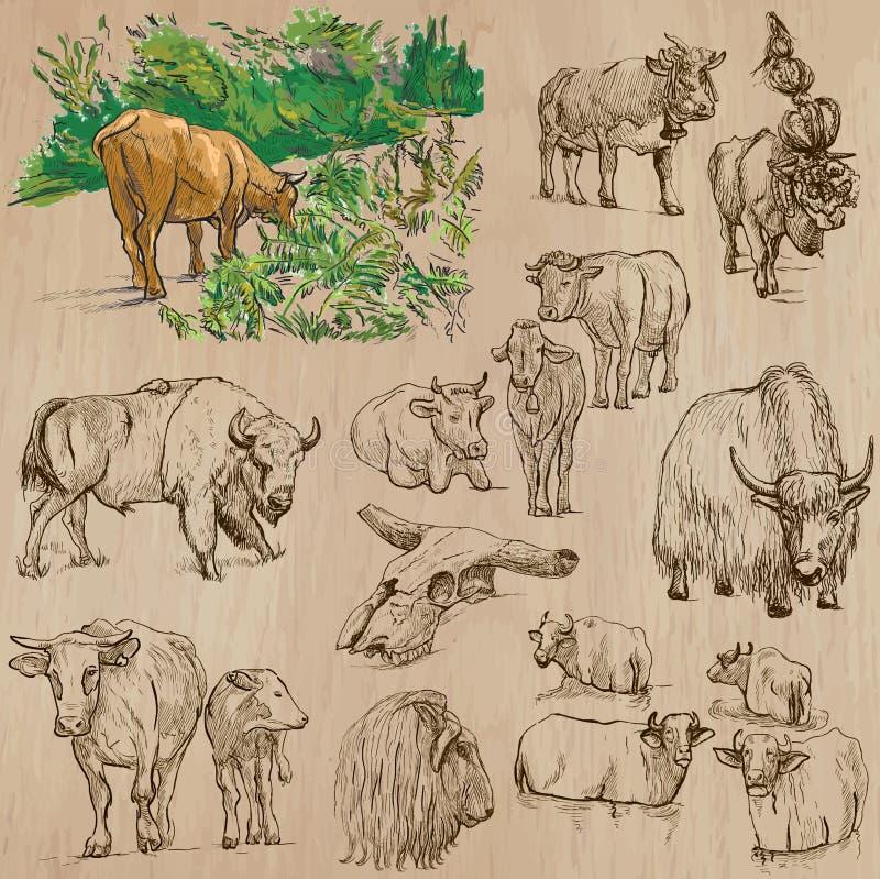 Kor och nötkreatur - räcka den utdragna vektorpacken vektor illustrationer