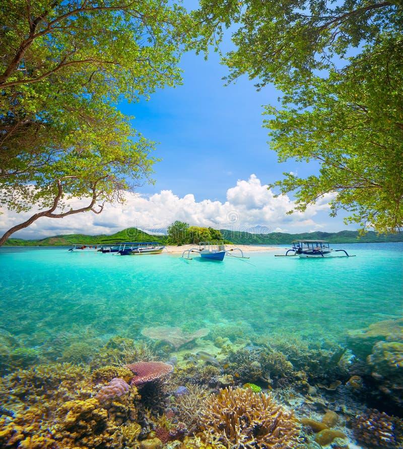 Koraalrif op achtergrond van tropisch woestijneiland stock afbeeldingen