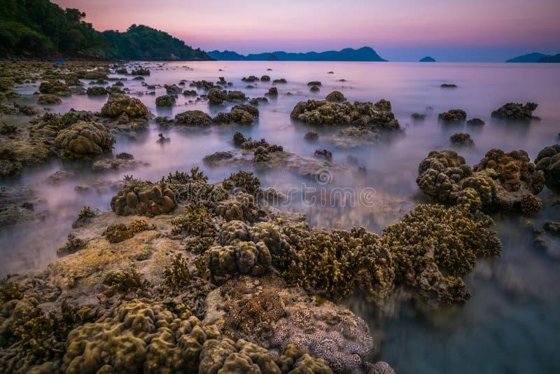 koraalrots rond strand tijdens eb en zonsondergangtijd brede sho royalty-vrije stock foto