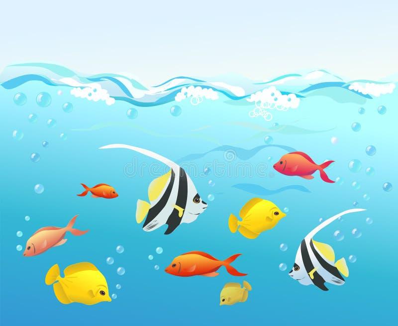 Koraalvissen onder water royalty-vrije illustratie