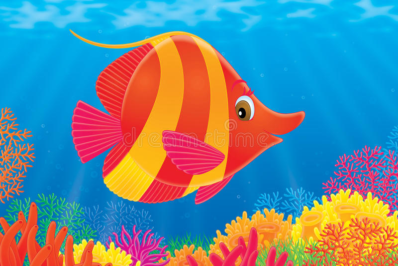 koral ryba royalty ilustracja