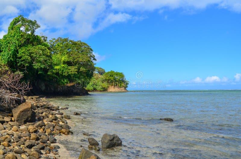 Korala wybrzeże, Viti Levu wyspa, Fiji obraz royalty free