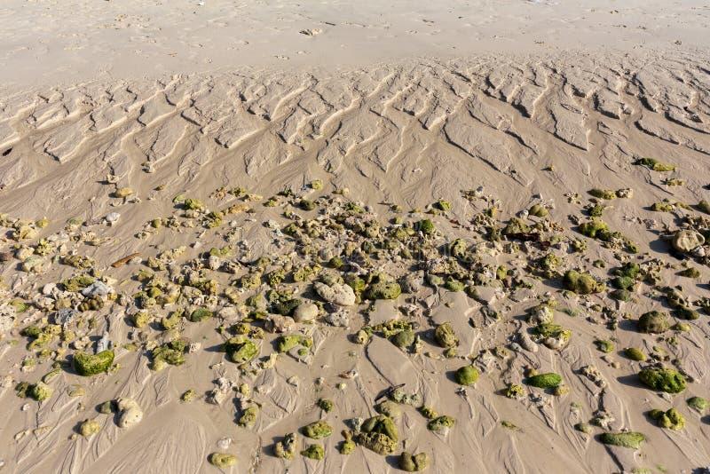 Koralen en zandige stranden na eb op het eiland van Koraal stock afbeeldingen