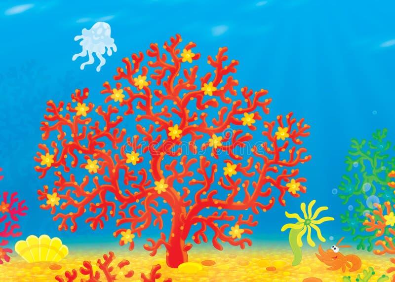 Koralle, Qualle, Panzerkrebse, Shell vektor abbildung