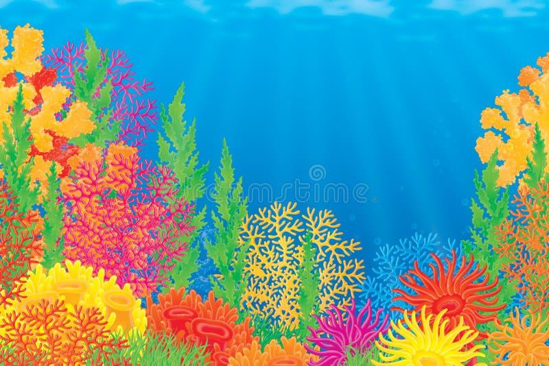 Korallenriff vektor abbildung