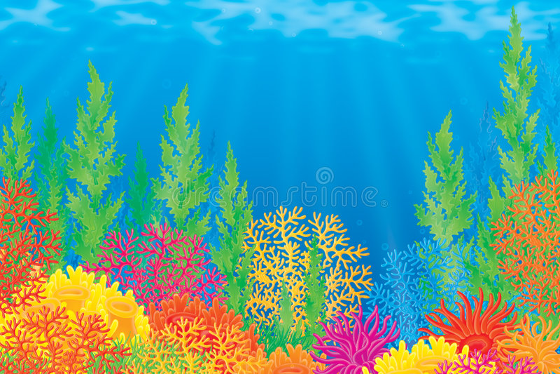 Korallenriff stock abbildung