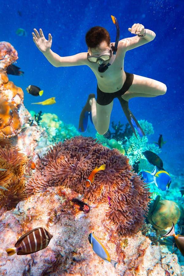 Korallenriff des Indischen Ozeans Snorkeler Malediven stockbilder