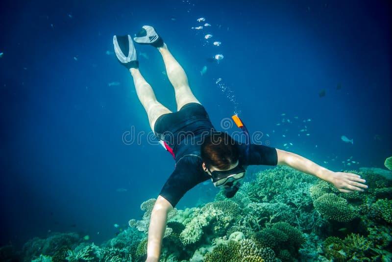 Korallenriff des Indischen Ozeans Snorkeler Malediven lizenzfreie stockfotografie