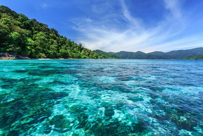 Korallenriff unter haarscharfem Meer in Tropeninsel stockfotografie