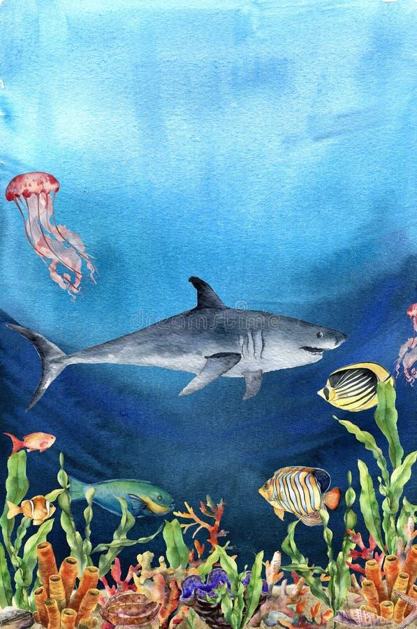 Korallenriffgrenze und -haifisch des Aquarells Handgemalte Unterwasserillustration mit Laminarianiederlassung, Fisch, tridact stock abbildung