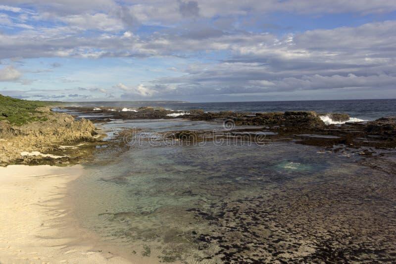 Korallenriffstrand in Tonga lizenzfreies stockbild