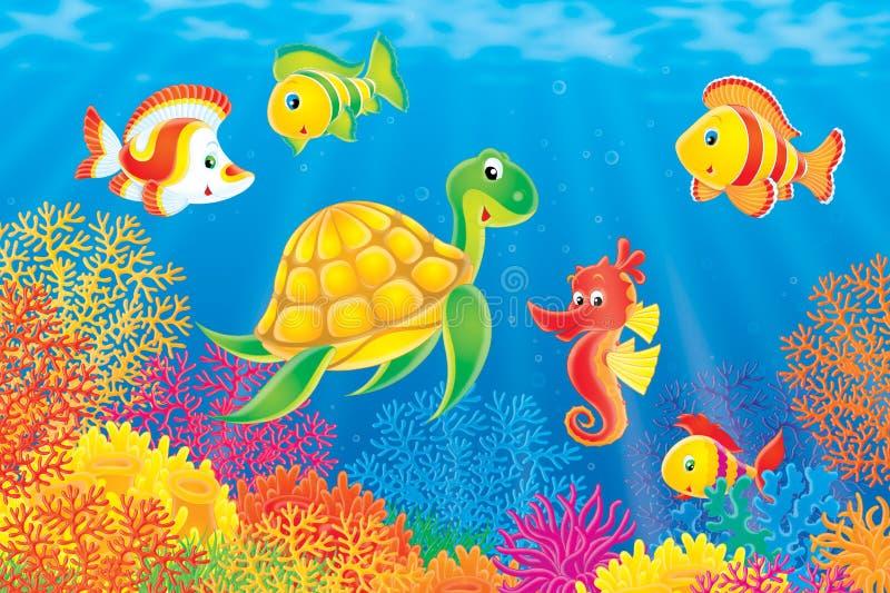 Korallenrote Fische, Schildkröte und Seahorse stock abbildung