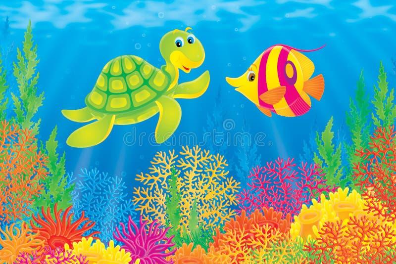 Korallenrote Fische und Schildkröte lizenzfreie abbildung
