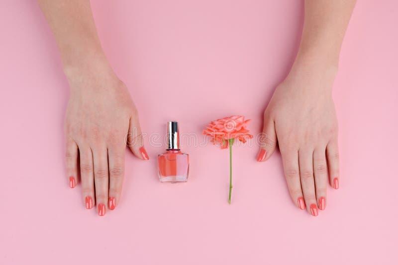 Korallenrote Nägel und rosafarbene Knospe stockbild