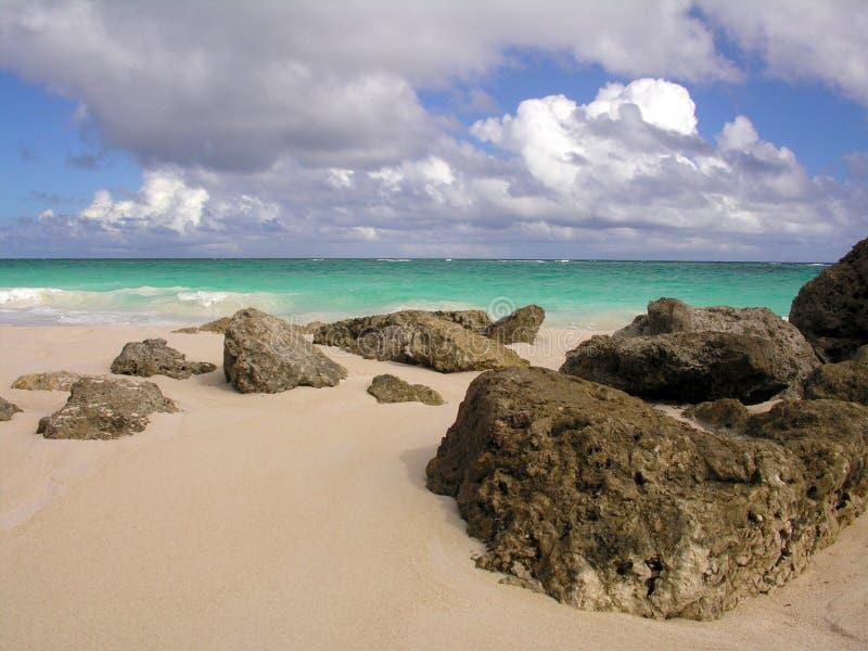 Korallenroter Strand Stockbild