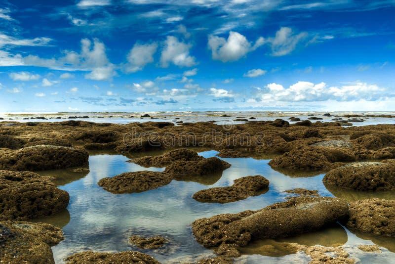 Korallenroter Strand und blauer Himmel stockbild
