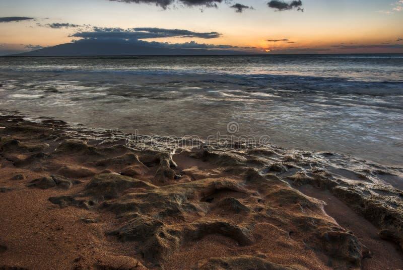 korallmaui solnedgång royaltyfri foto