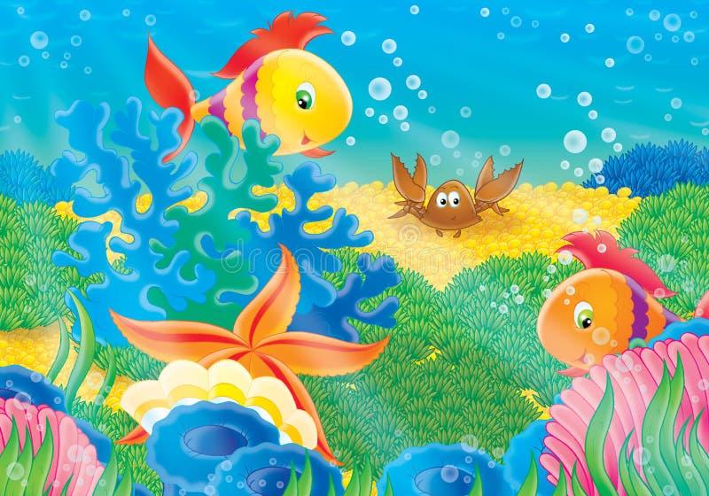 korallrev vektor illustrationer