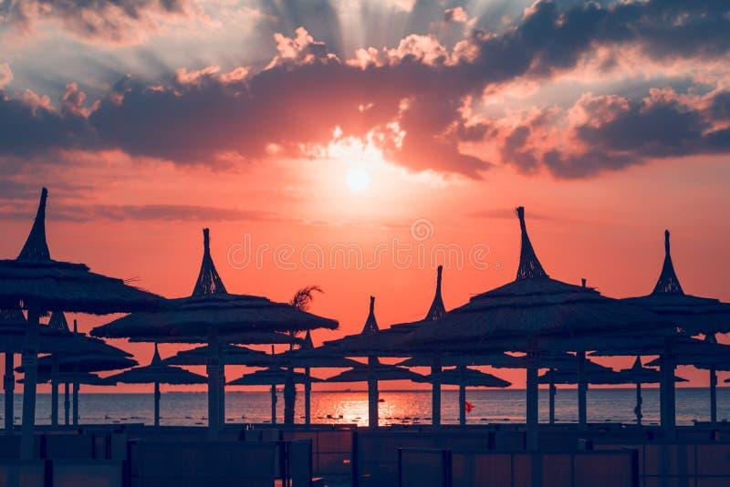 Korallsolnedgång eller soluppgång på sjösidan med paraplyer royaltyfria bilder