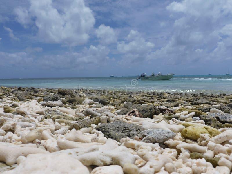 Korallstrand med en molnig himmel arkivbild