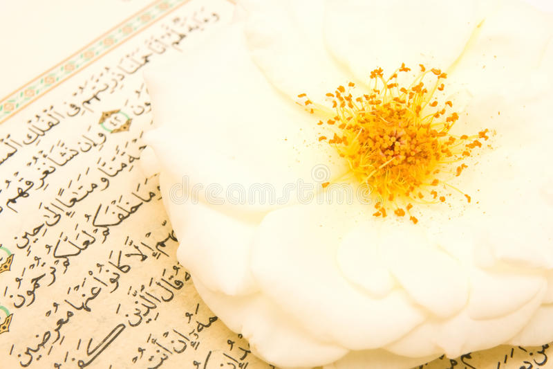 Koran foto de stock
