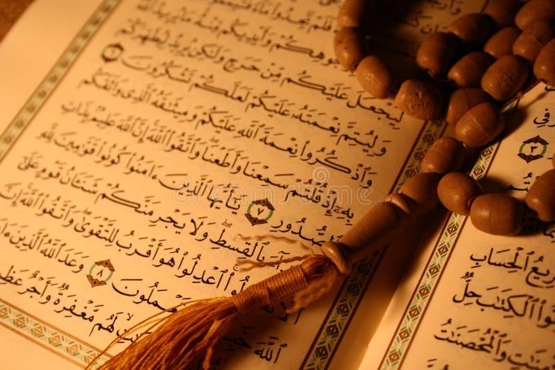 Koran & de rozentuin van de hulst stock fotografie