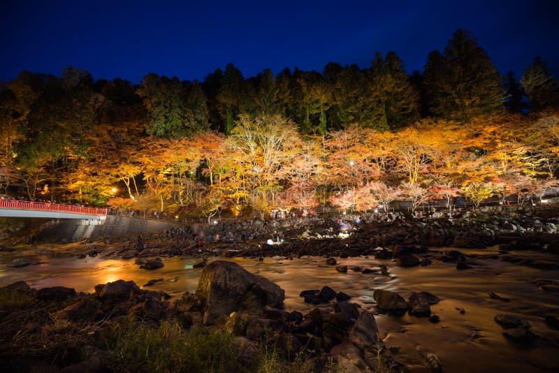 Korankei im Herbst mit Beleuchtungszeigung in Aichi, Japan stockbilder