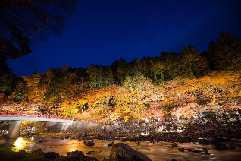 Korankei im Herbst mit Beleuchtungszeigung in Aichi, Japan lizenzfreie stockfotos