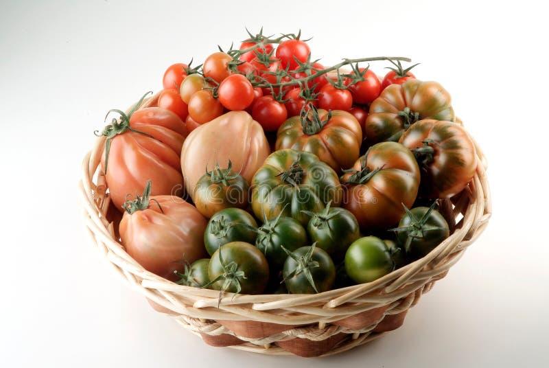 Korb der Tomaten lizenzfreies stockfoto
