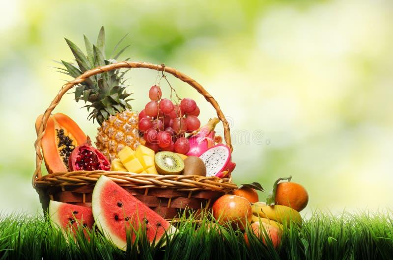 Korb der tropischen Früchte auf grünem Gras lizenzfreie stockfotos