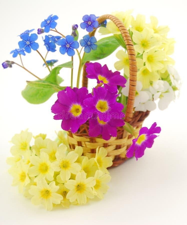 Korb mit Blumen lizenzfreie stockfotografie