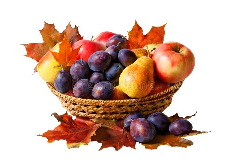 Korb mit den Früchten und Herbstlaub, lokalisiert auf Weiß stockbilder