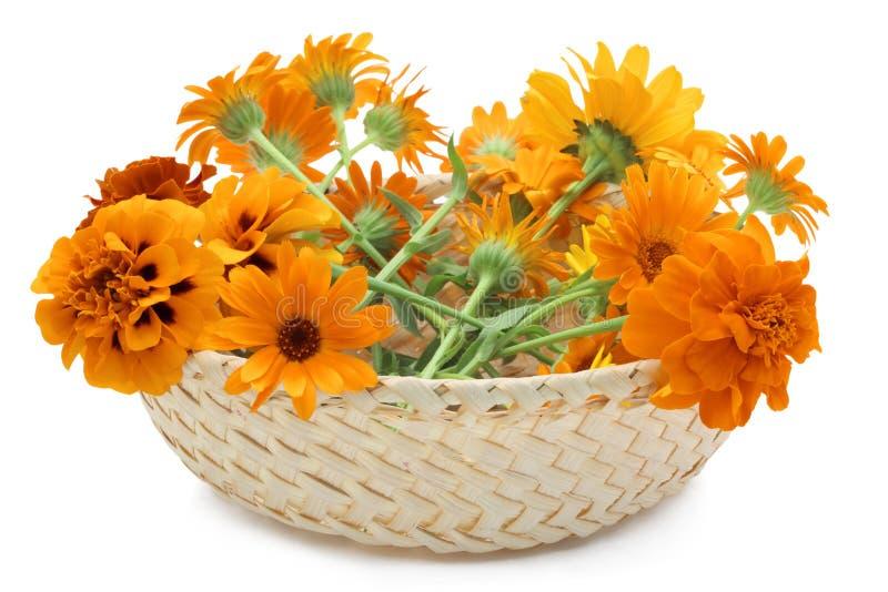 Korb mit orange Blumen lizenzfreie stockfotografie