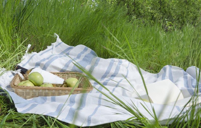 Relax Im Grünen: Lesung Und Picknick Im Garten Stockbild