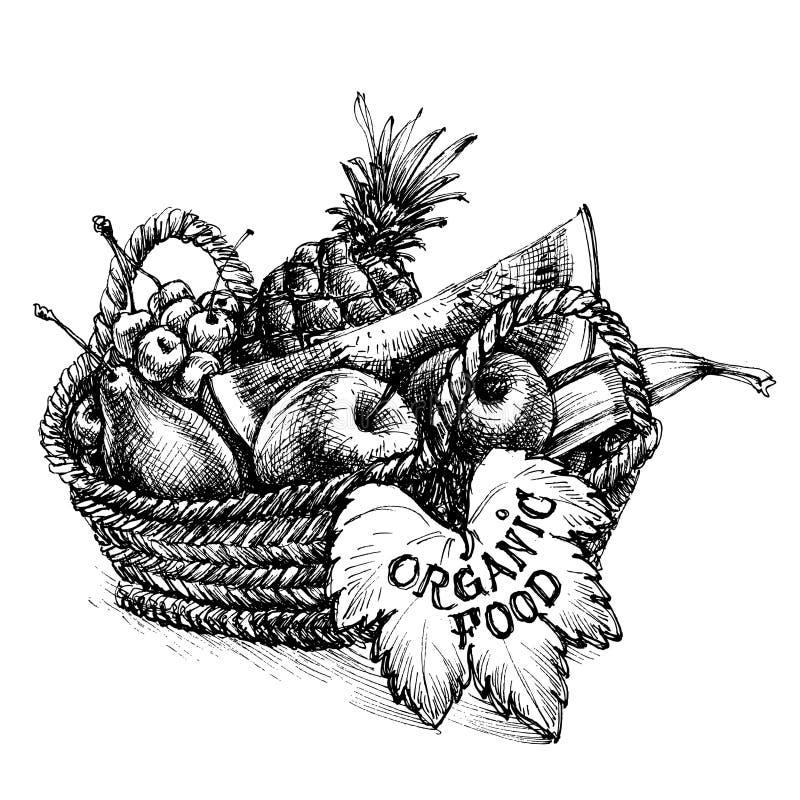 Korb voll der Früchte stock abbildung