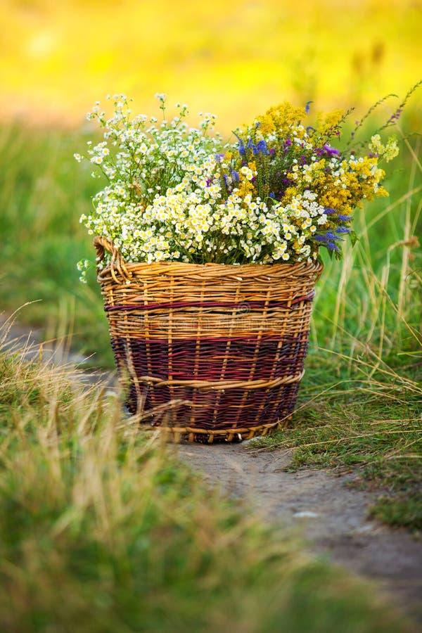 Korb voll von frischen wilden Feld-Blumen lizenzfreie stockbilder