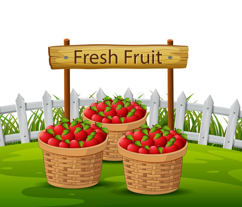 Korb von Äpfeln im Garten stock abbildung