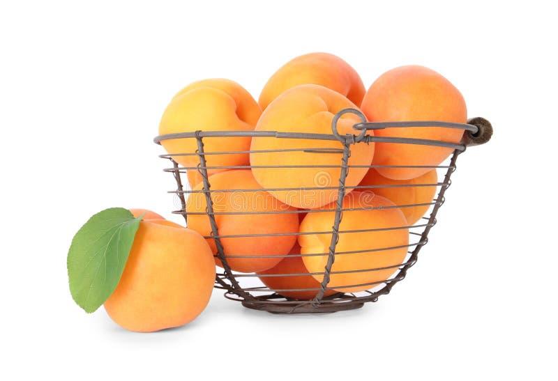 Korb von reifen Aprikosen auf Weiß stockfotos