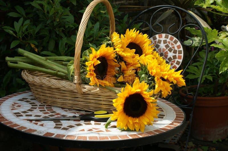 Korb von Sonnenblumen 3 lizenzfreies stockbild