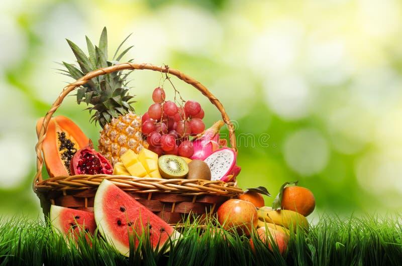 Korb von tropischen Früchten auf grünem Gras stockfotos