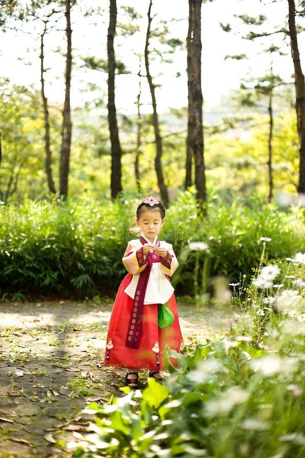 Koreański dziecko jest ubranym Tradycyjnego Hanbok, kwiatu ogród zdjęcie stock