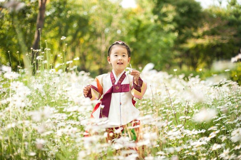 Koreański dziecko jest ubranym Tradycyjnego Hanbok, kwiatu ogród obraz royalty free