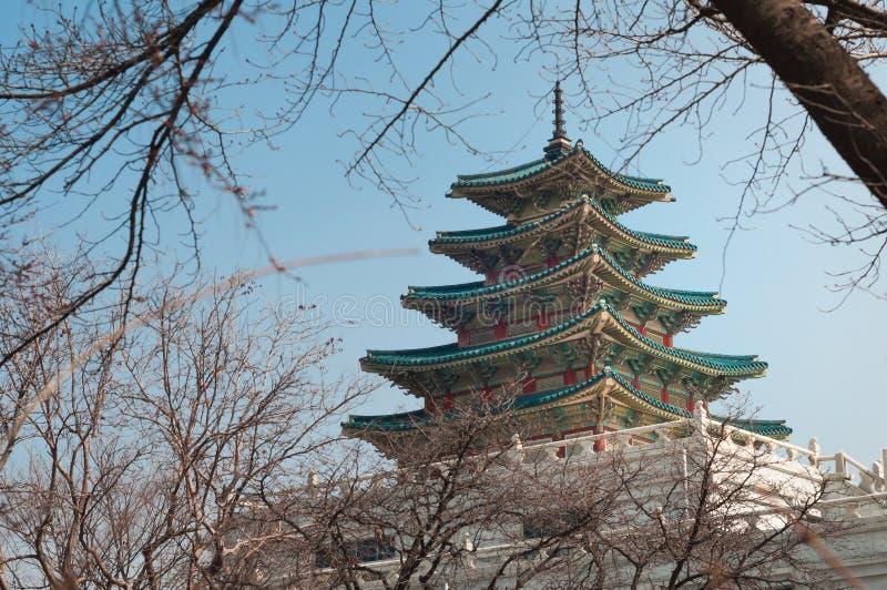 Korea nationellt Folk museum royaltyfri foto