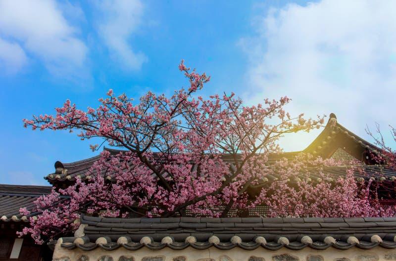 Korea Old House at Namsangol Hanok Village. In Seoul South Korea royalty free stock image