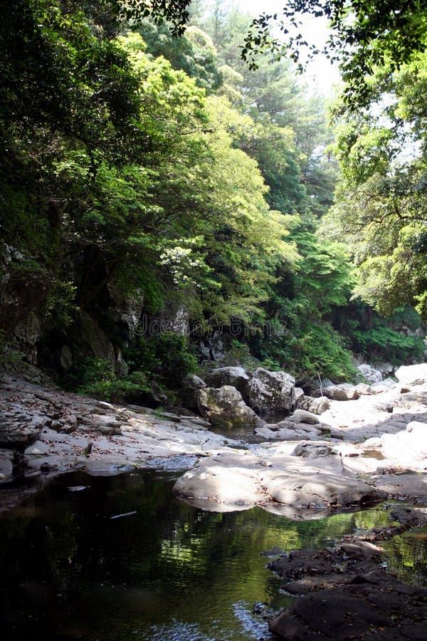 Korea ` s Cheju wyspy dolina obrazy stock