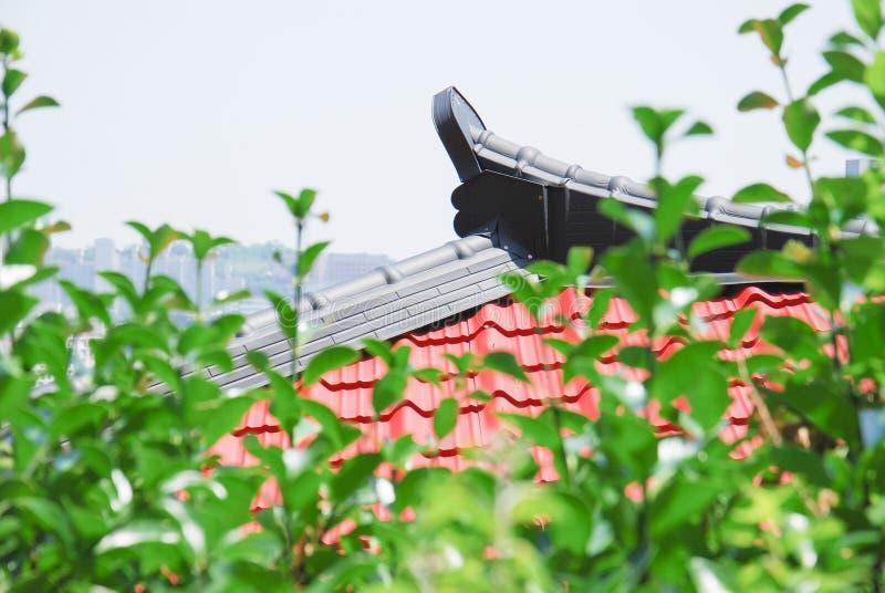 Koreaanse dakpiek stock foto
